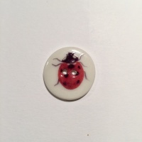 Ladybird Smaller Medium Button