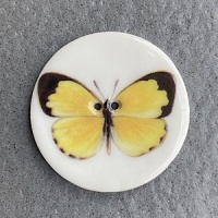 Yellow Butterfly Large Circular
