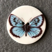 Blue Butterfly Large Circular Button